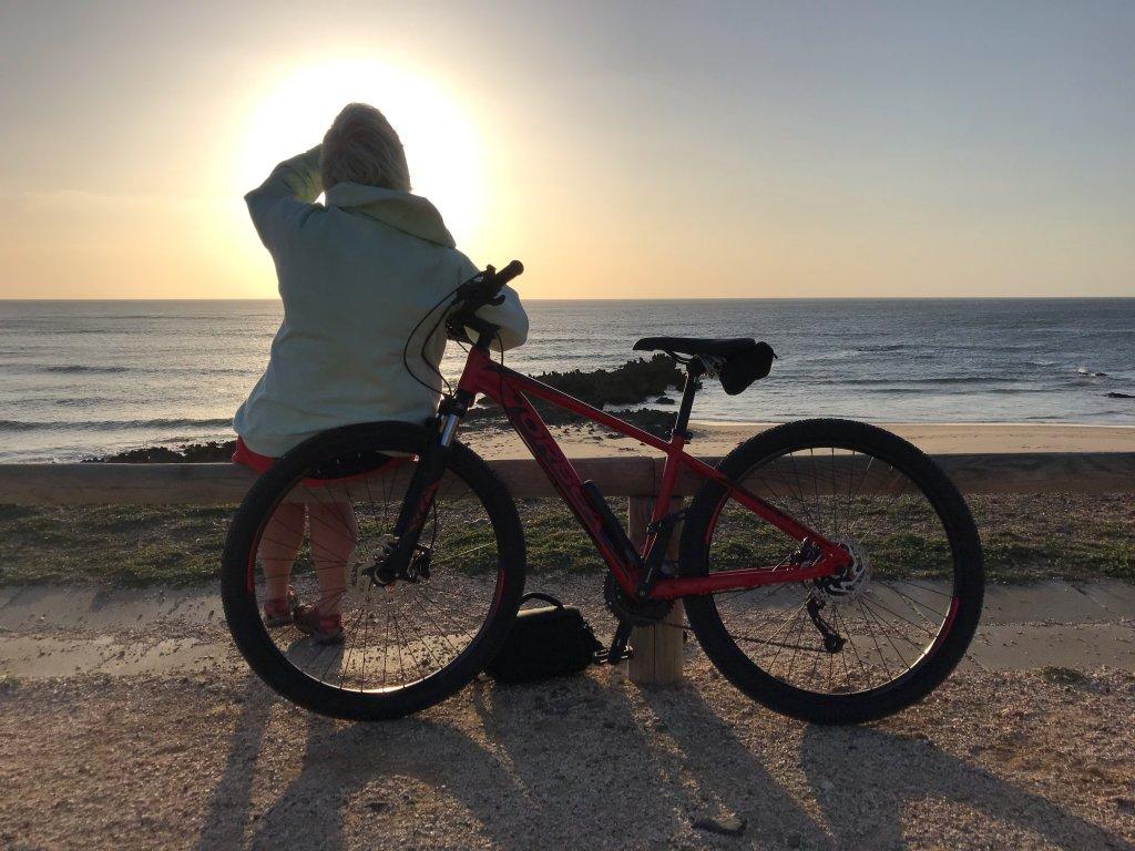 Hashtag Bike Rental